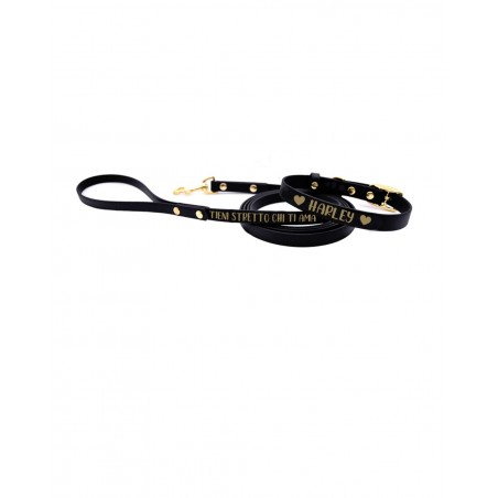 Personalized collar and leash Bicolor