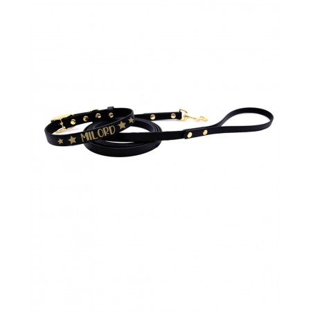 Personalized collar and leash Starblack
