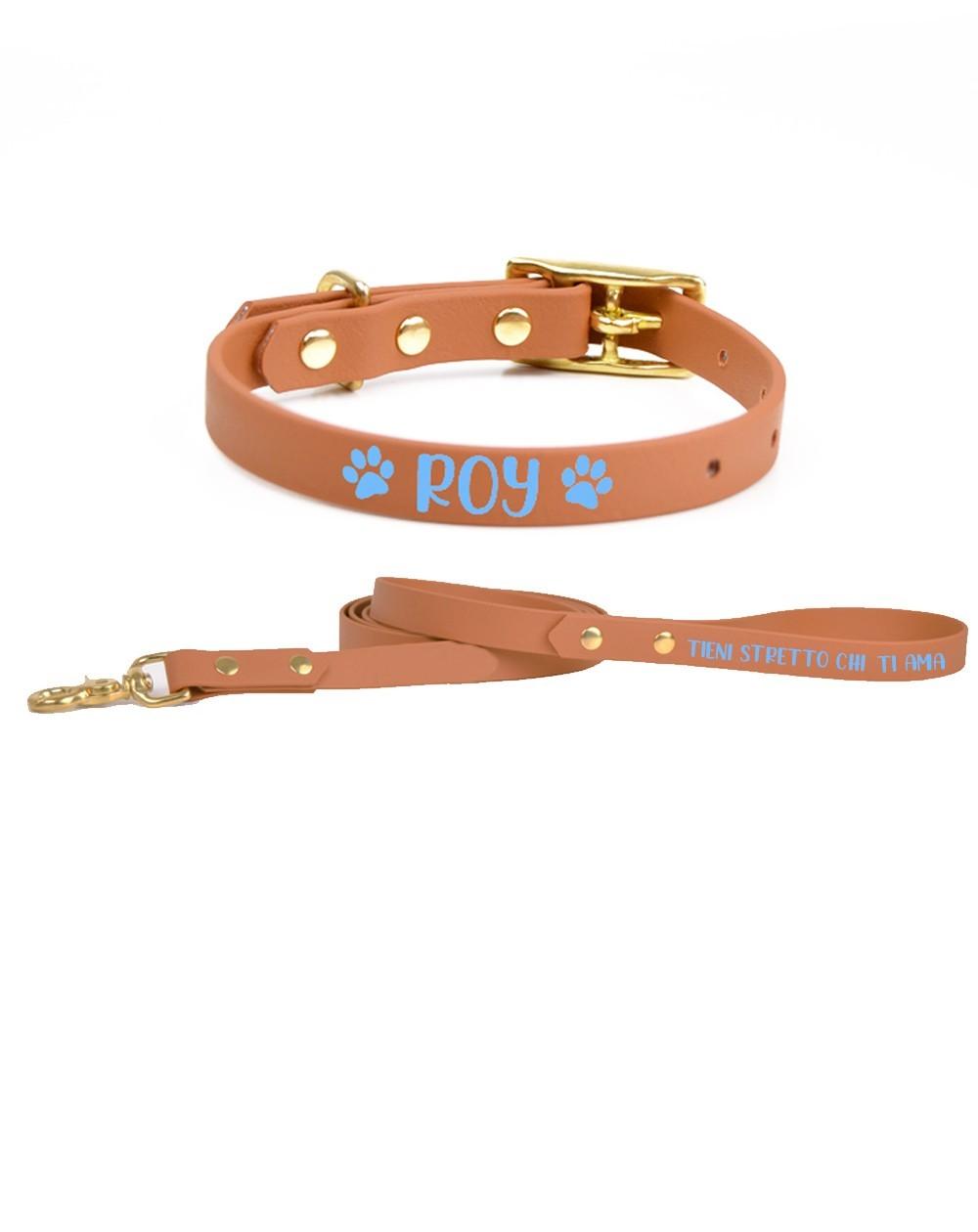 Personalized collar and leash Celescuo