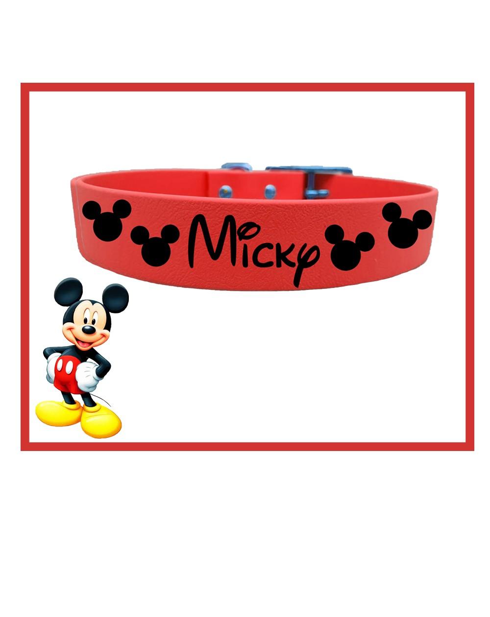 Collare personalizzato con nome per cani modello Topolino