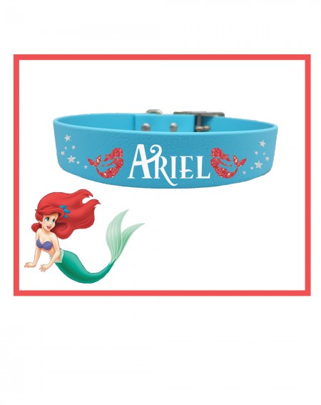 Personalized Collars Dog's Name Mermaid